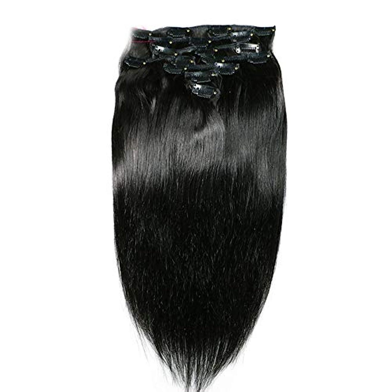 マーキーネックレットミンチHOHYLLYA ヘアエクステンションクリップ人間の髪の毛のremyフルヘッドダブル横糸ストレートヘアピースナチュラルブラックコンポジットヘアレースかつらロールプレイングウィッグロングとショートの女性自然 (色 : 黒,...