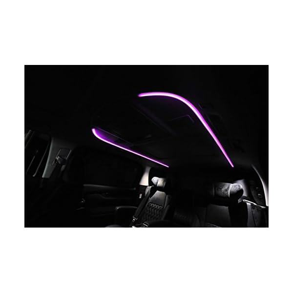 NOBLESSE(ノブレッセ) ルーフカラーイ...の紹介画像3