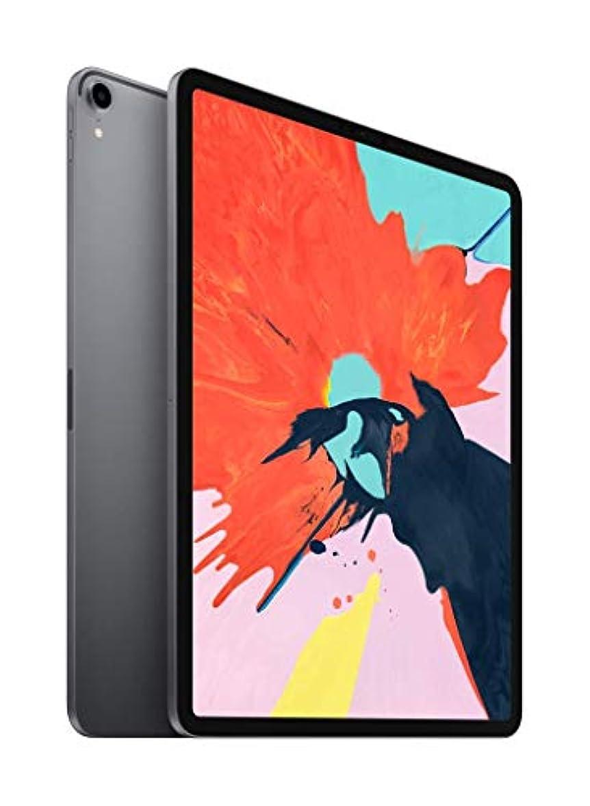農奴スプリット単位Apple iPad Pro (12.9インチ, Wi-Fi, 256GB) - スペースグレイ