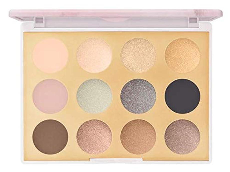 溶ける関係ない摩擦mac Electric Wonder Eyeshadow Palette  EYE SHADOW X 12 Desert lightning マック エレクトリックワンダー アイシャドウ パレット  デザートライティング...