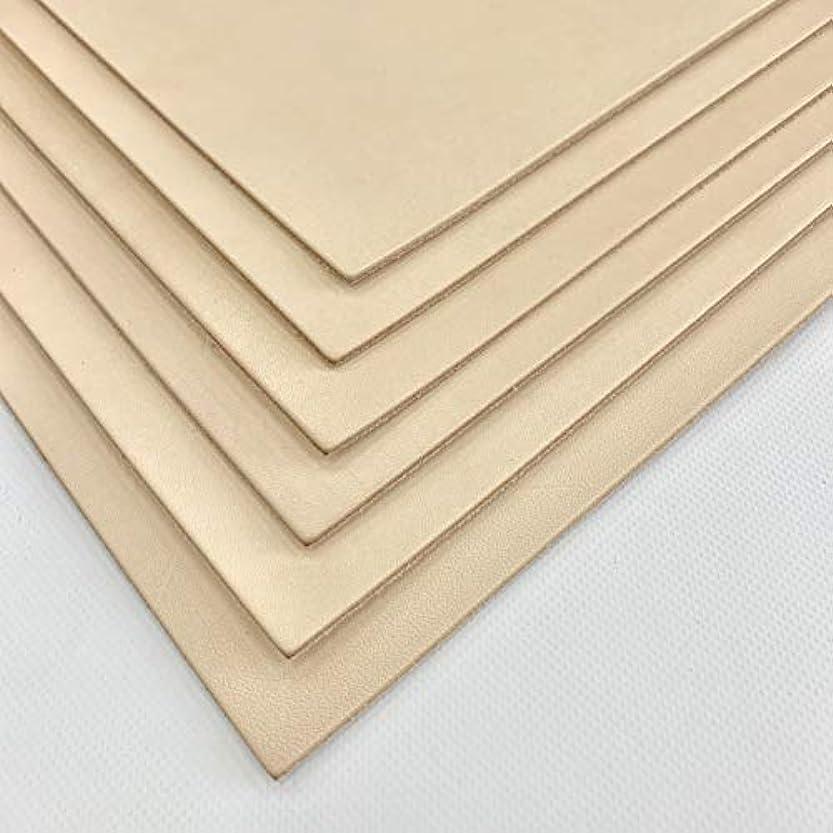 メールを書くプレゼントの間で10cube leathermart レザークラフトに最適 セット ヌメ革 きなり 成牛タンロー 国産 /A4サイズ(210x297mm) 6枚セット (1.0mm厚)