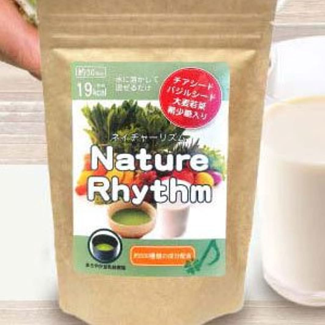 推定フライカイト親愛なNature Rhythm スーパーフードMIX酵素スムージー グリーンスムージー ダイエット (まろやか豆乳抹茶, 200g)
