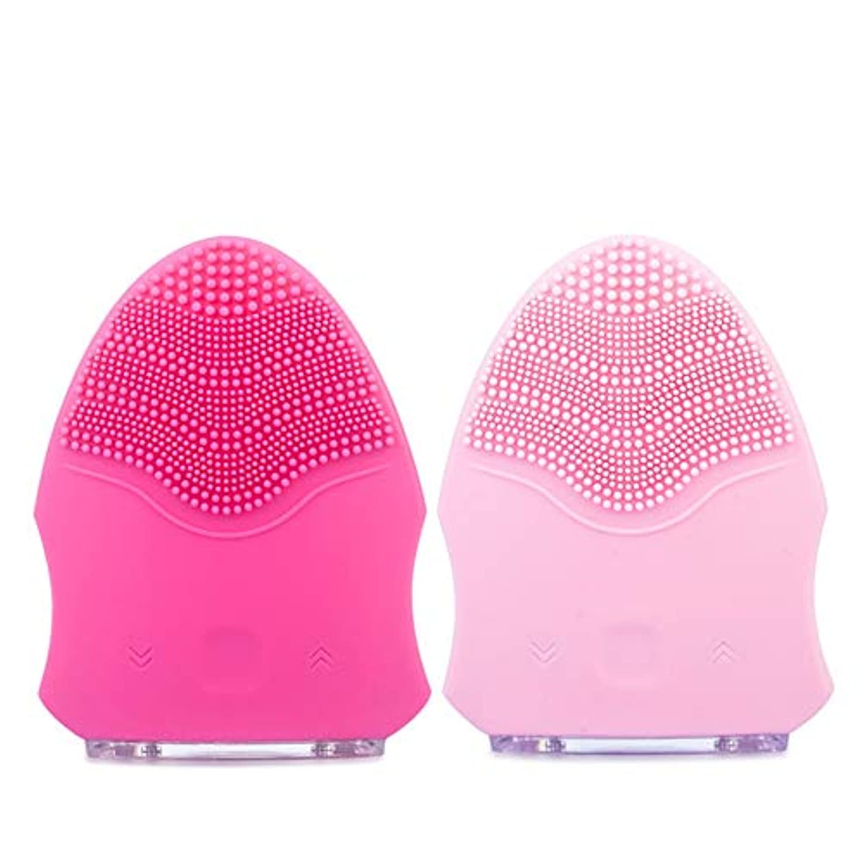 まとめる重要な役割を果たす、中心的な手段となるファームZXF 防水シリコーン洗顔器毛穴掃除美容器用充電器ピンク赤セクション 滑らかである (色 : Red)