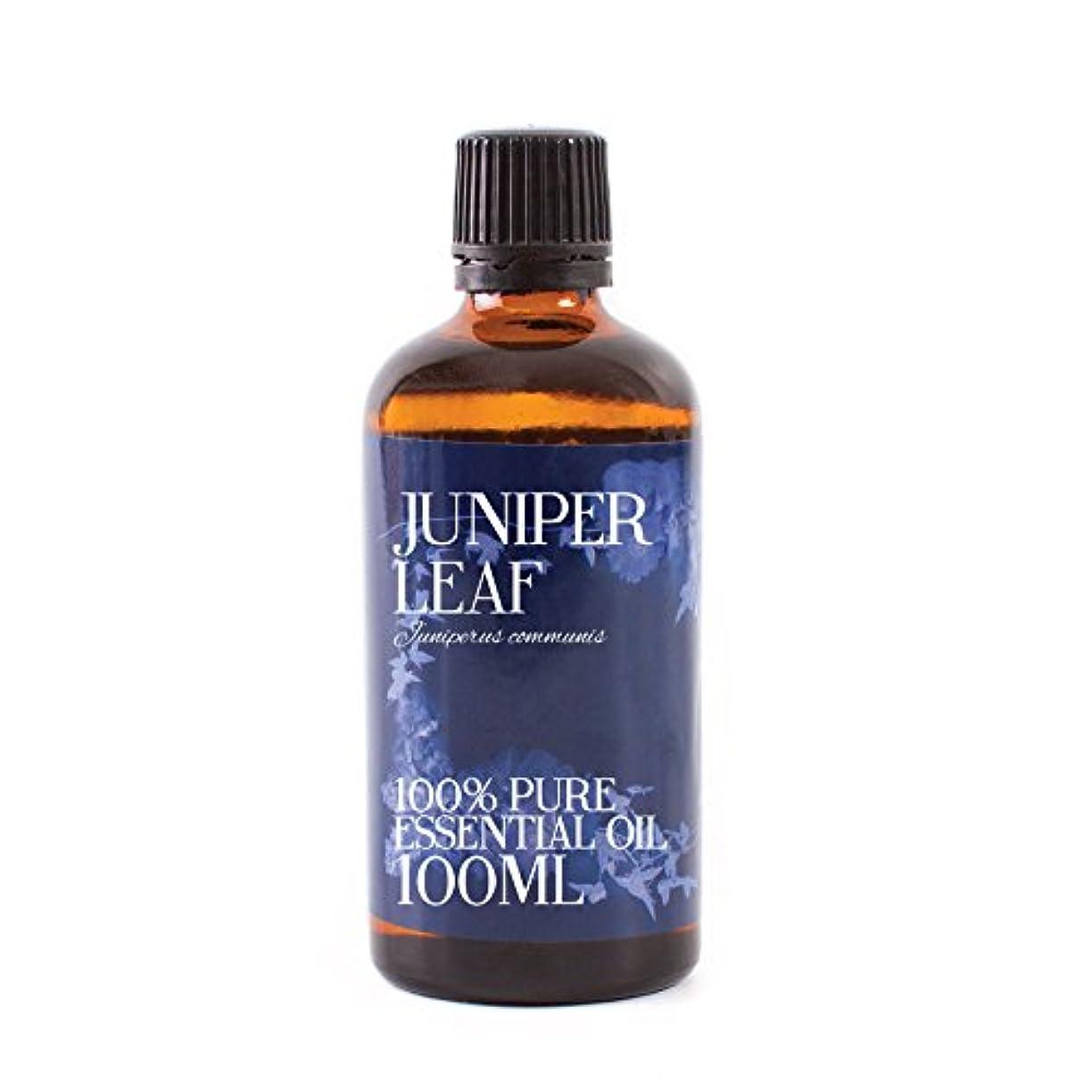 阻害するフレッシュ酸度Mystic Moments | Juniper Leaf Essential Oil - 100ml - 100% Pure