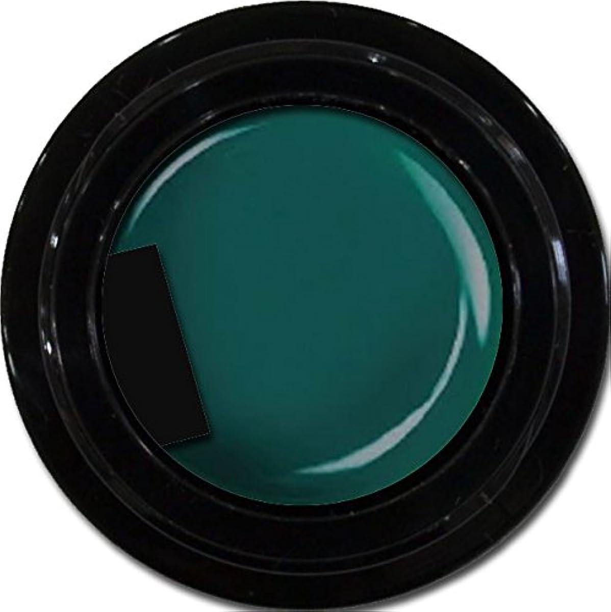 四面体刺しますにぎやかカラージェル enchant color gel M713 Olive 3g/ マットカラージェル M713 オリーブ 3グラム