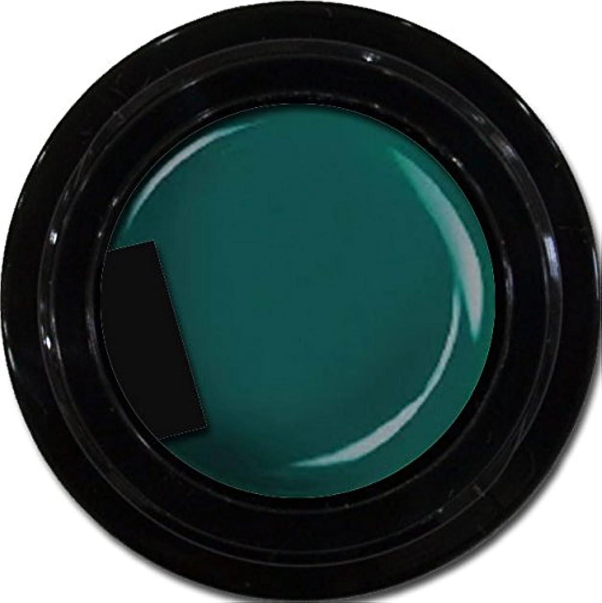 句読点名詞同級生カラージェル enchant color gel M713 Olive 3g/ マットカラージェル M713 オリーブ 3グラム