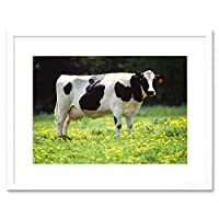 Nature Agriculture Farm Animal Cow Friesian Field Framed Wall Art Print 自然ファーム動物フィールド壁