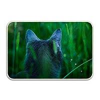 猫の草の耳の背面図玄関マット 泥落としマット ドアマット キッチンマット 吸水 洗える 滑り止め付き 耐磨耗性 薄い 屋内屋外兼用 業務用 家庭用 50×80cm