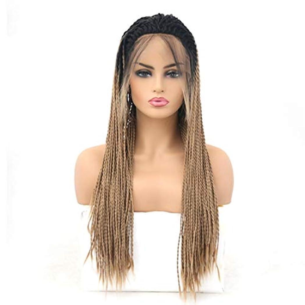 遺体安置所人事使い込むKerwinner 女性のための前髪の毛髪のかつらとフロントレースグラデーションかつら耐熱合成かつら (Size : 24 inches)