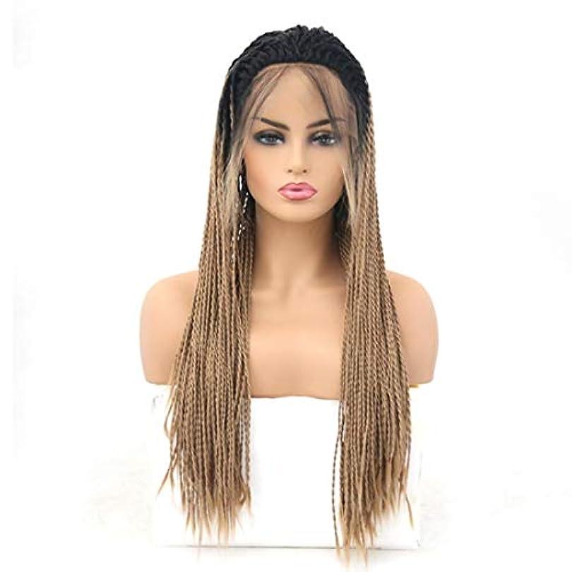 レトルト麦芽続編Kerwinner 女性のための前髪の毛髪のかつらとフロントレースグラデーションかつら耐熱合成かつら (Size : 24 inches)