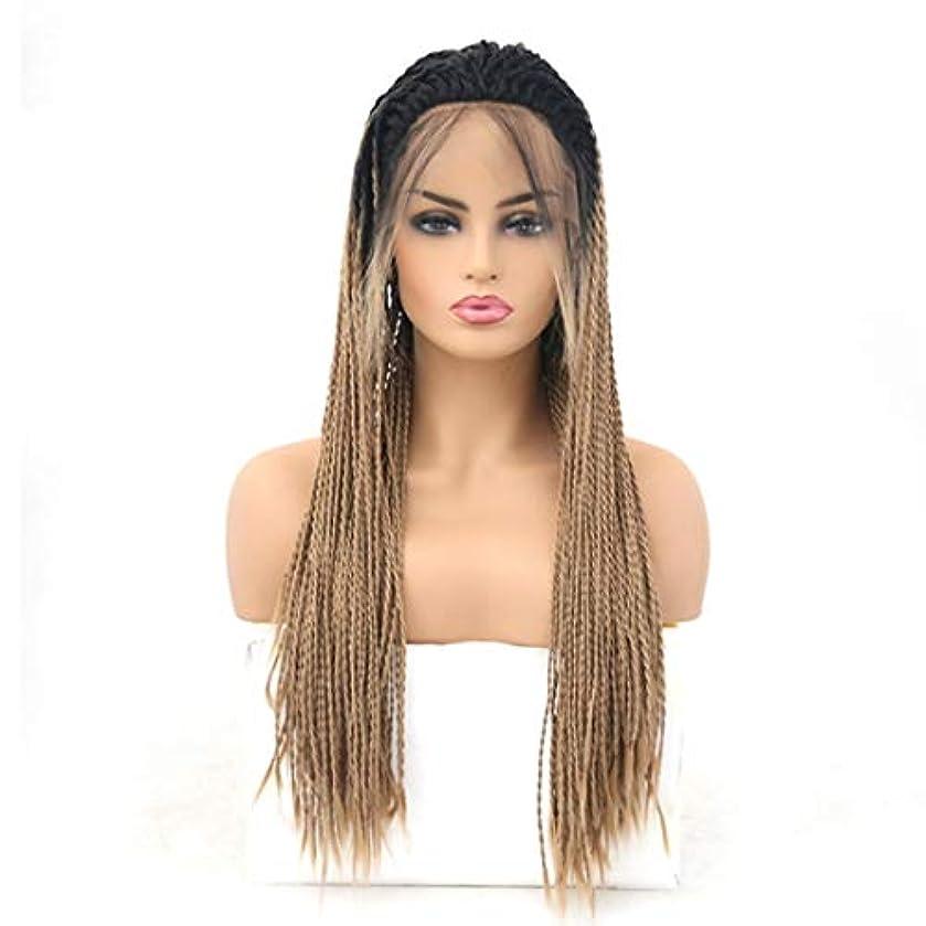 増幅器服を片付ける人に関する限りKerwinner 女性のための前髪の毛髪のかつらとフロントレースグラデーションかつら耐熱合成かつら (Size : 26 inches)