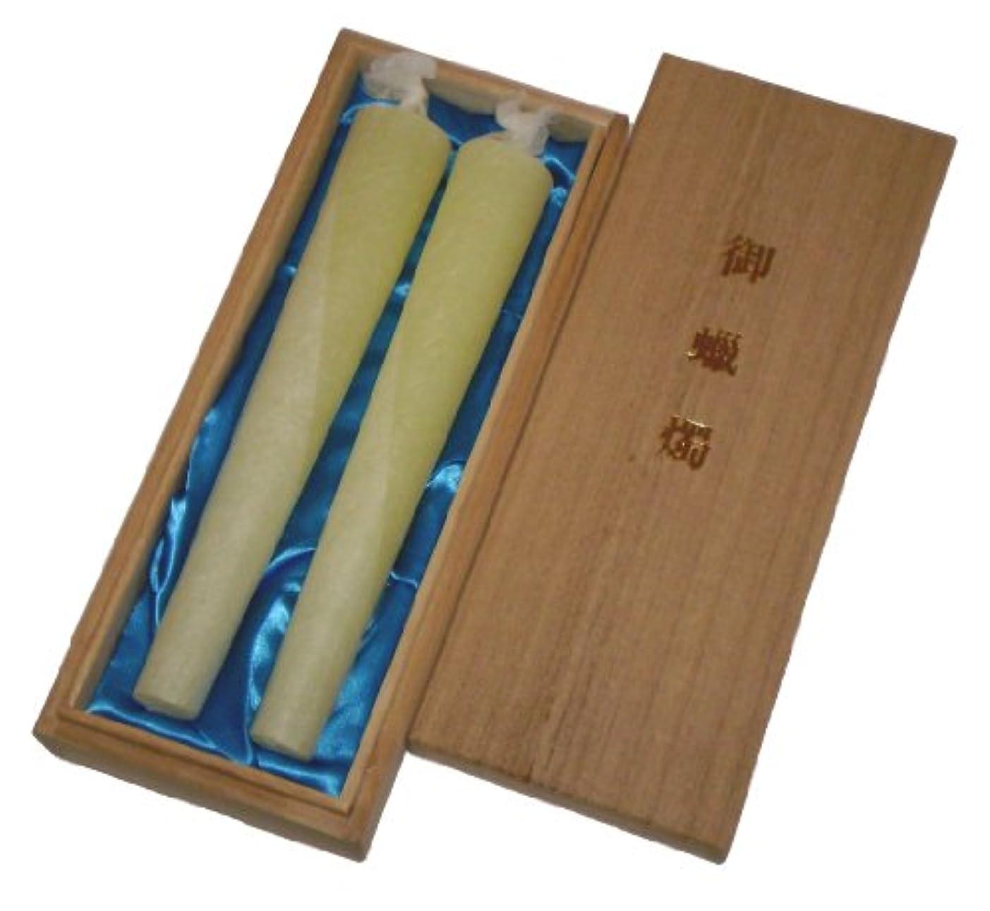 欠点スペインたまに鳥居のローソク 蜜蝋 典雅 30号2本入 桐箱 #100430