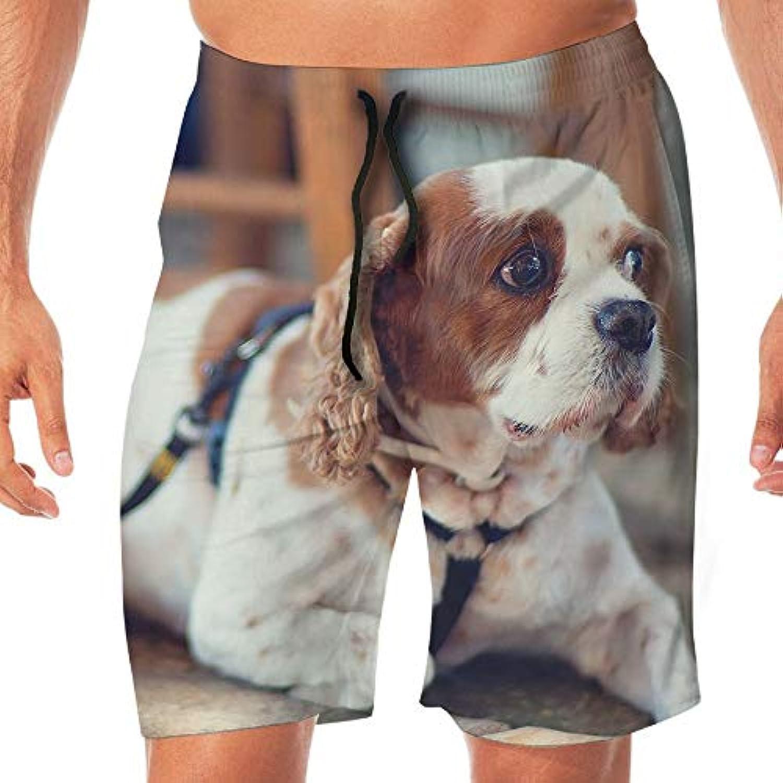 メンズ水着 ビーチショーツ ショートパンツ ドッグ犬 スイムショーツ サーフトランクス 速乾 水陸両用 調節可能