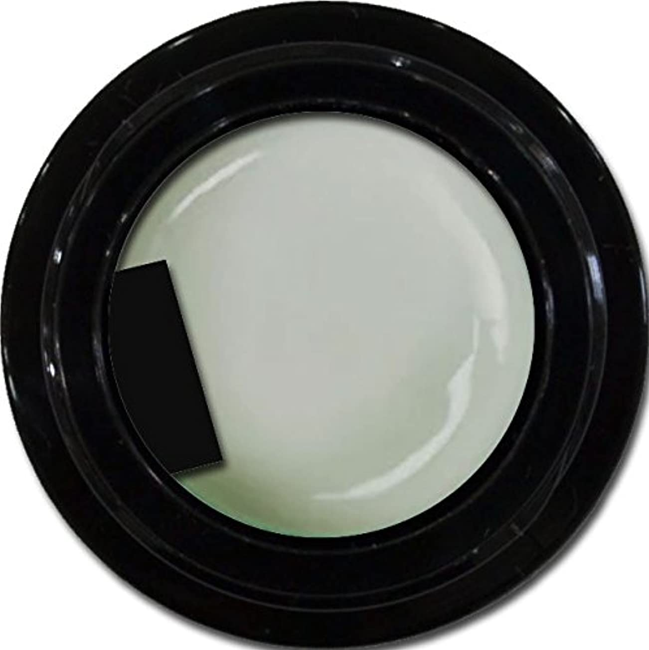 肉生じる日カラージェル enchant color gel M802 PuffGray 3g/ マットカラージェル M802 パフグレー 3グラム