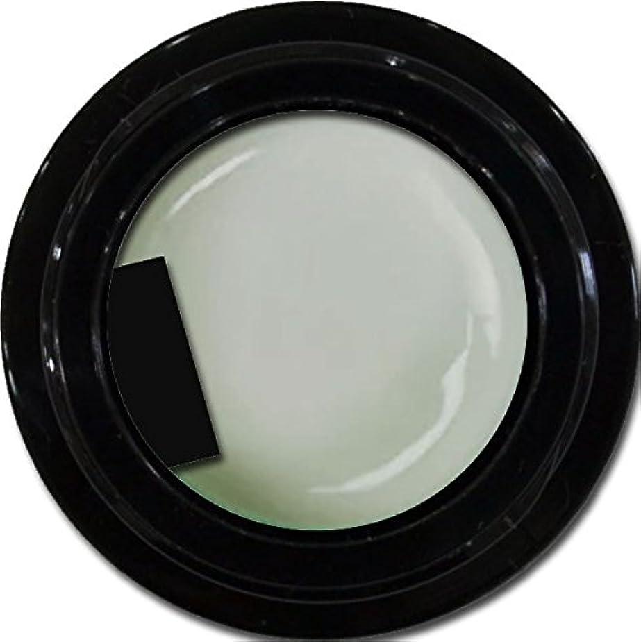 スタンドアラバマ有名カラージェル enchant color gel M802 PuffGray 3g/ マットカラージェル M802 パフグレー 3グラム