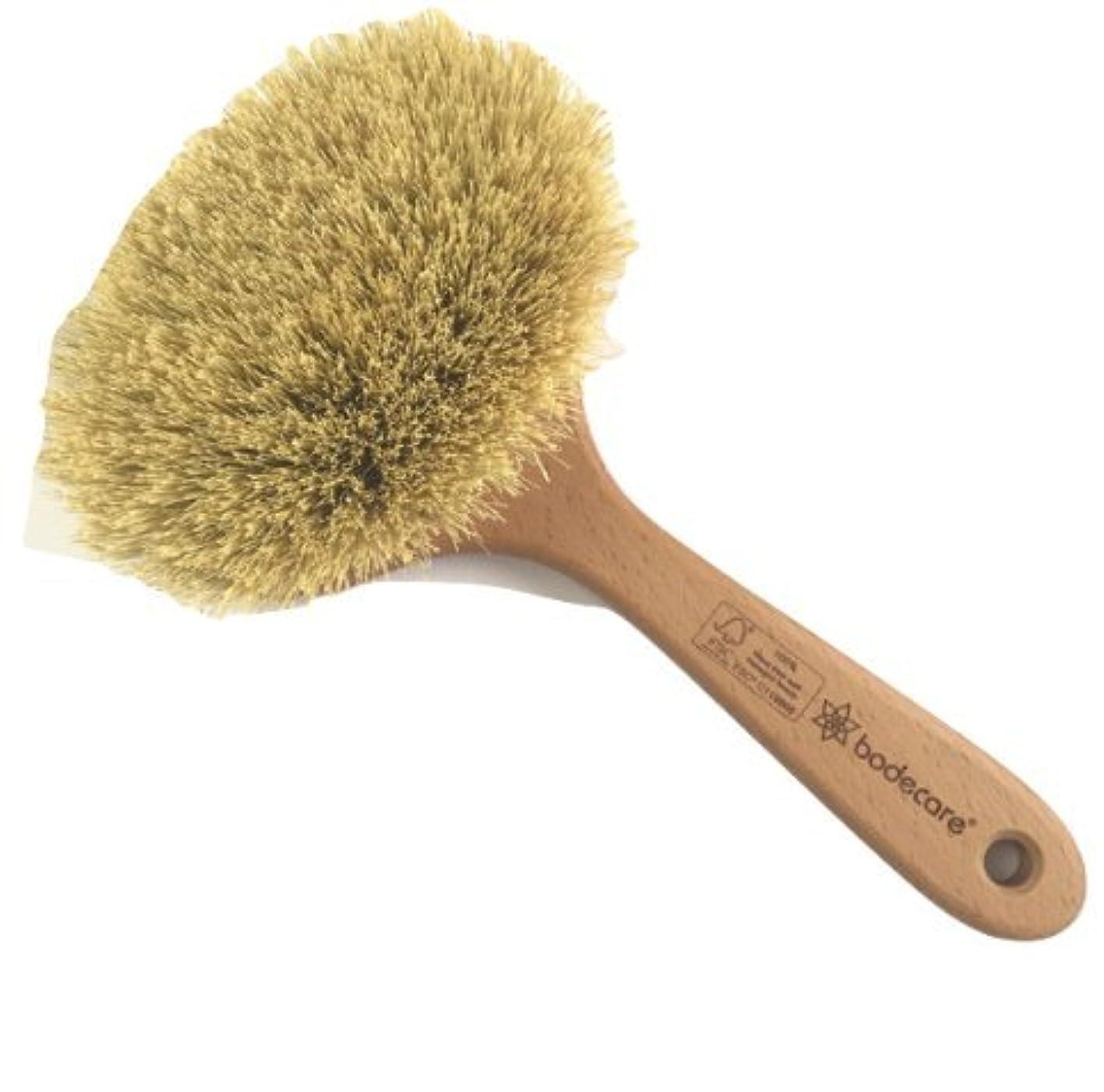 確立拡大するワイヤーめぐりの良い美肌にデトックスドライボディブラシ(ミディアム)