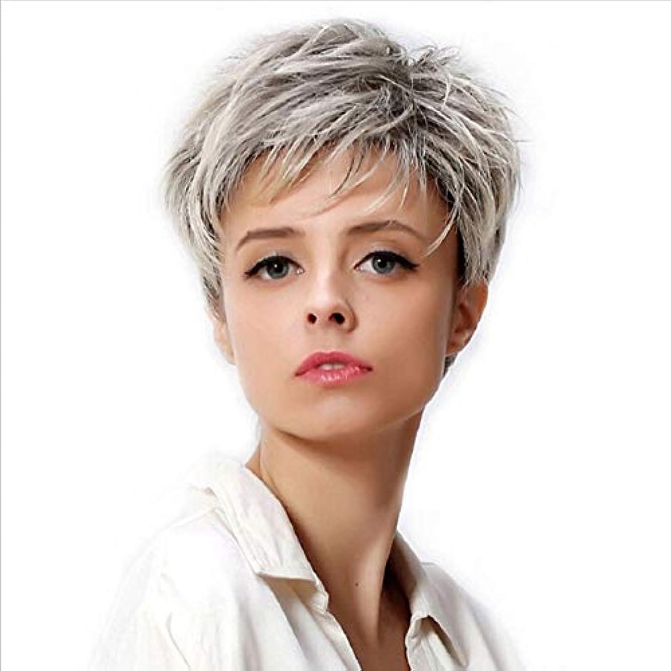 前件堤防ポーチWASAIO 女性の短い銀のかつらグレー合成繊維ふわふわ髪のかつら (色 : グレー)