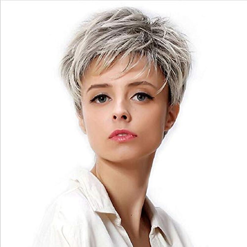 スリンクプランターカロリーWASAIO 女性の短い銀のかつらグレー合成繊維ふわふわ髪のかつら (色 : グレー)