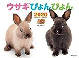 カレンダー2020 ウサギぴょんぴょん (ヤマケイカレンダー2020)
