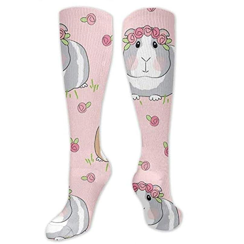 ライン検出器ヒューム靴下,ストッキング,野生のジョーカー,実際,秋の本質,冬必須,サマーウェア&RBXAA Guinea Pigs Roses Socks Women's Winter Cotton Long Tube Socks Knee...
