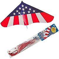 ゲイラカイトアメリカンGayla Kite風に乗って気持ちよく飛ぶ凧
