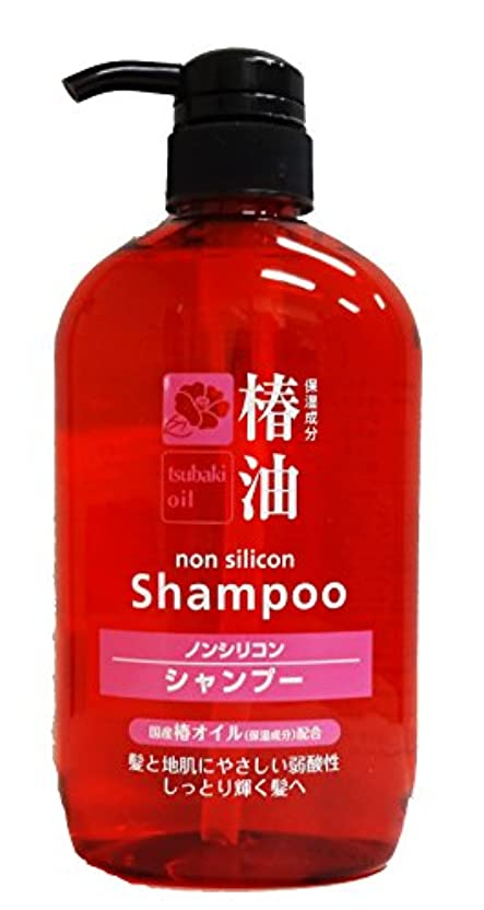 毎週ラベルびっくりする熊野油脂 椿シャンプー 600ml