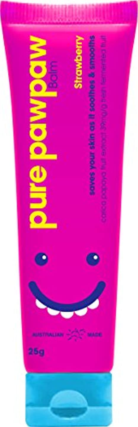 補助金オーバーヘッド内向きPPP3002 ピュアポーポー ストロベリー 25g