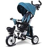 子供の三輪車、手押し三輪車は回すことができます ( Color : 1 )