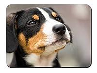 黒、白、茶色、犬、顔 パターンカスタムの マウスパッド 動物 (26cmx21cm)