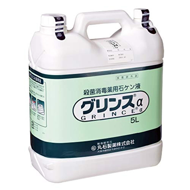ピケソーダ水腹丸石製薬 グリンスアルファー 5リットル