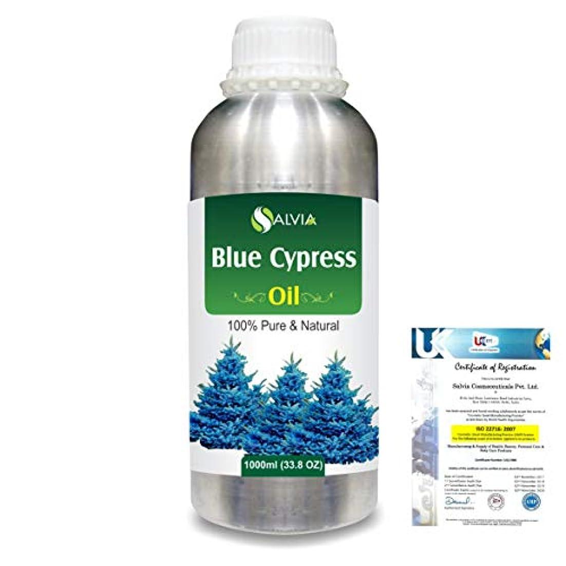 ジャベスウィルソン当社詐欺Blue Cypress (Callitris Columellaris) 100% Natural Pure Essential Oil 1000ml/33.8fl.oz.
