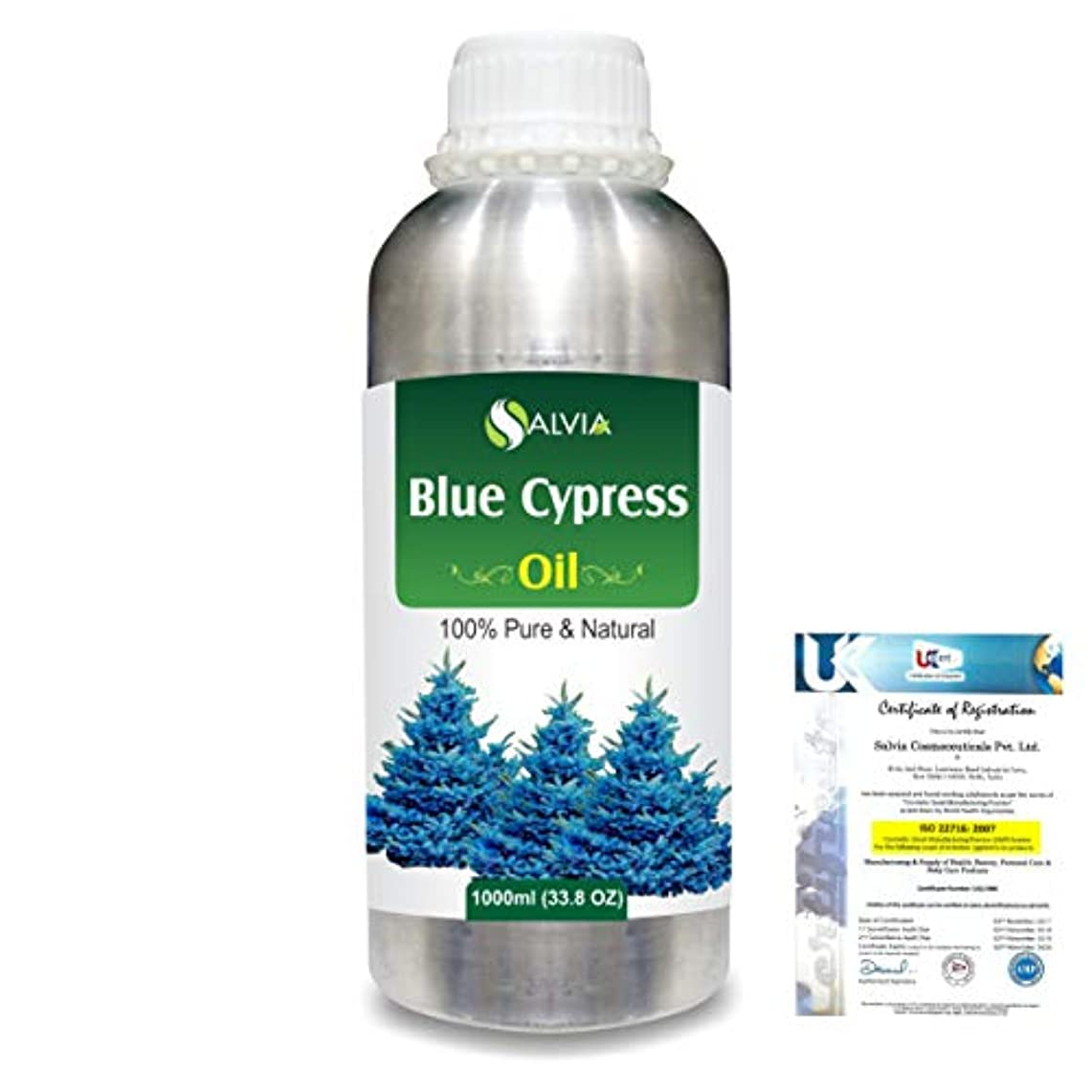 伝えるインストール水差しBlue Cypress (Callitris Columellaris) 100% Natural Pure Essential Oil 1000ml/33.8fl.oz.