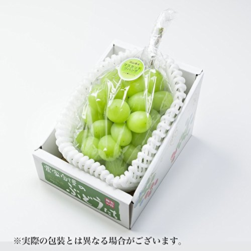 新品種 マスカットジパング 岡山県産 JAおかやま 赤秀 約600g 1房 お中元 ギフト ぶどう 葡萄