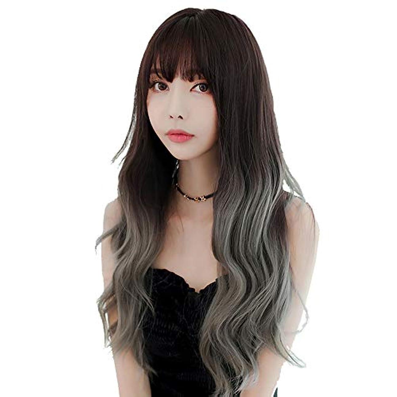 SRY-Wigファッション ヨーロッパとアメリカ26ロングミックスグレーレディースウィッグ前髪水波耐熱合成ウィッグ女性用