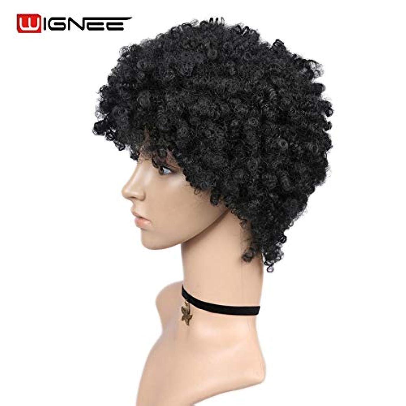 ゲージマエストロ診療所女性の好きなウィッグ ショートヘアアフロ変態カーリーウィッグ高い密度の温度女性ミックスブラウンコスプレアフリカのヘアスタイルのための合成ウィッグ (Color : WigneeGAD16007S, Stretched Length : 6inches)