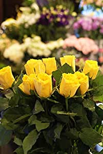 箱買い 一級品のバラ(黄色系) 誕生日・記念日・卒業・送別・各種お祝い