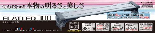 寿工芸 フラットLED 300