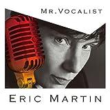 Mr Vocalist