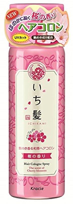 天使修正する繁栄するいち髪 艶めき香る和草ヘアコロン 桜の香り 80g 【5本セット】