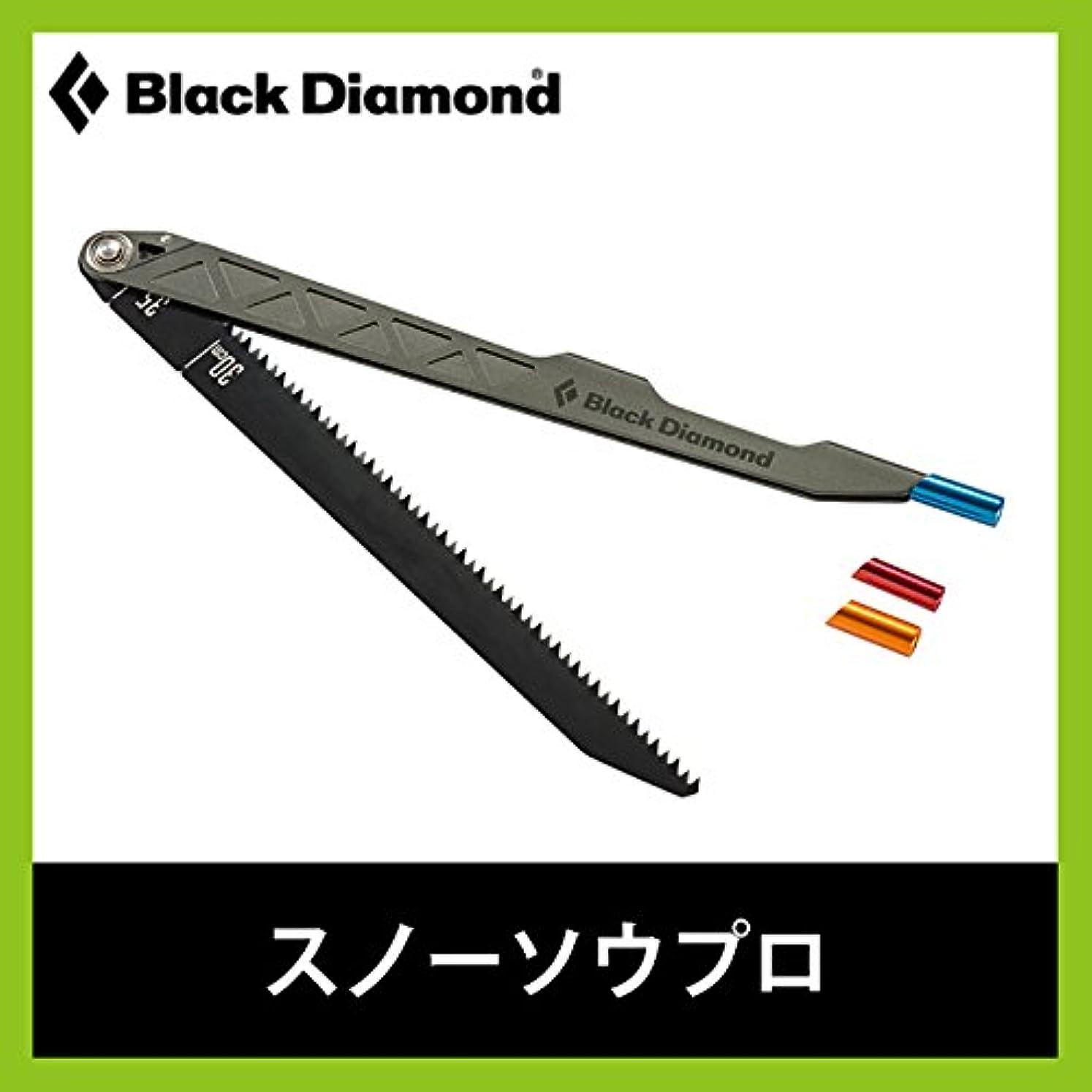 アルプス団結誇りブラックダイヤモンド スノーソウプロ BD43051