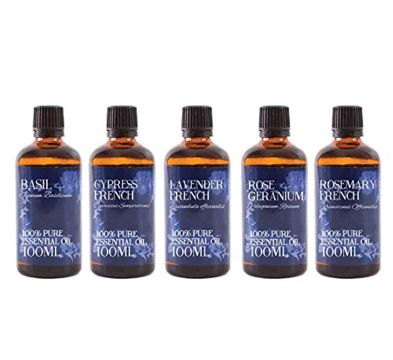 孤独届ける試験Mystic Moments | Gift Starter Pack of 5 x 100ml - Essential Oils Of France
