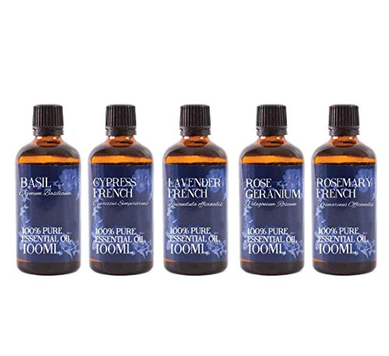 番目り破滅Mystic Moments   Gift Starter Pack of 5 x 100ml - Essential Oils Of France