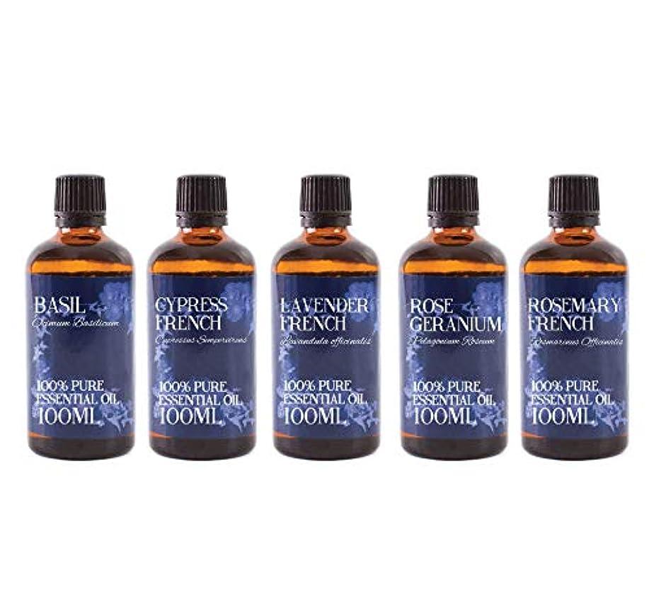 商標放送神Mystic Moments | Gift Starter Pack of 5 x 100ml - Essential Oils Of France