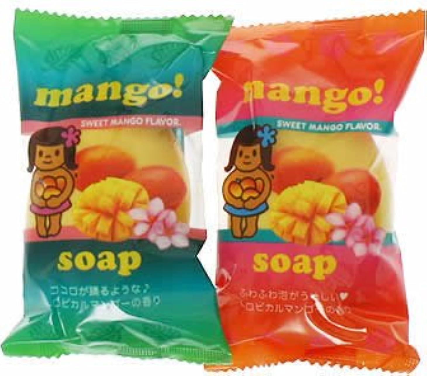 くちばしチャーミングマトンフルーツマーケットソープ マンゴー (70g*2個入)