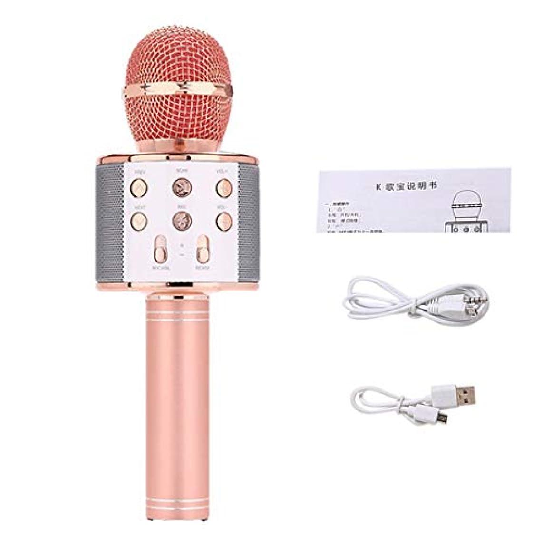 アプト教える時系列プロのワイヤレスマイク高感度ホームKTV音楽再生IOSのワンラインチャットカラオケマイク-ローズゴールド