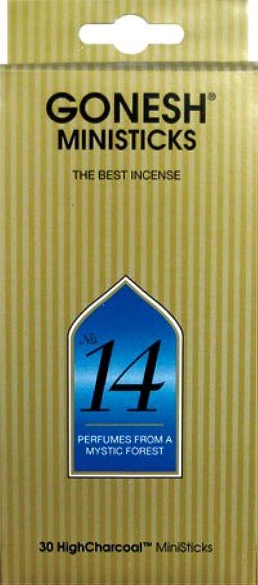 浴室ブロック司令官GONESH ミニスティック NO.14 30本入 X 2個セット