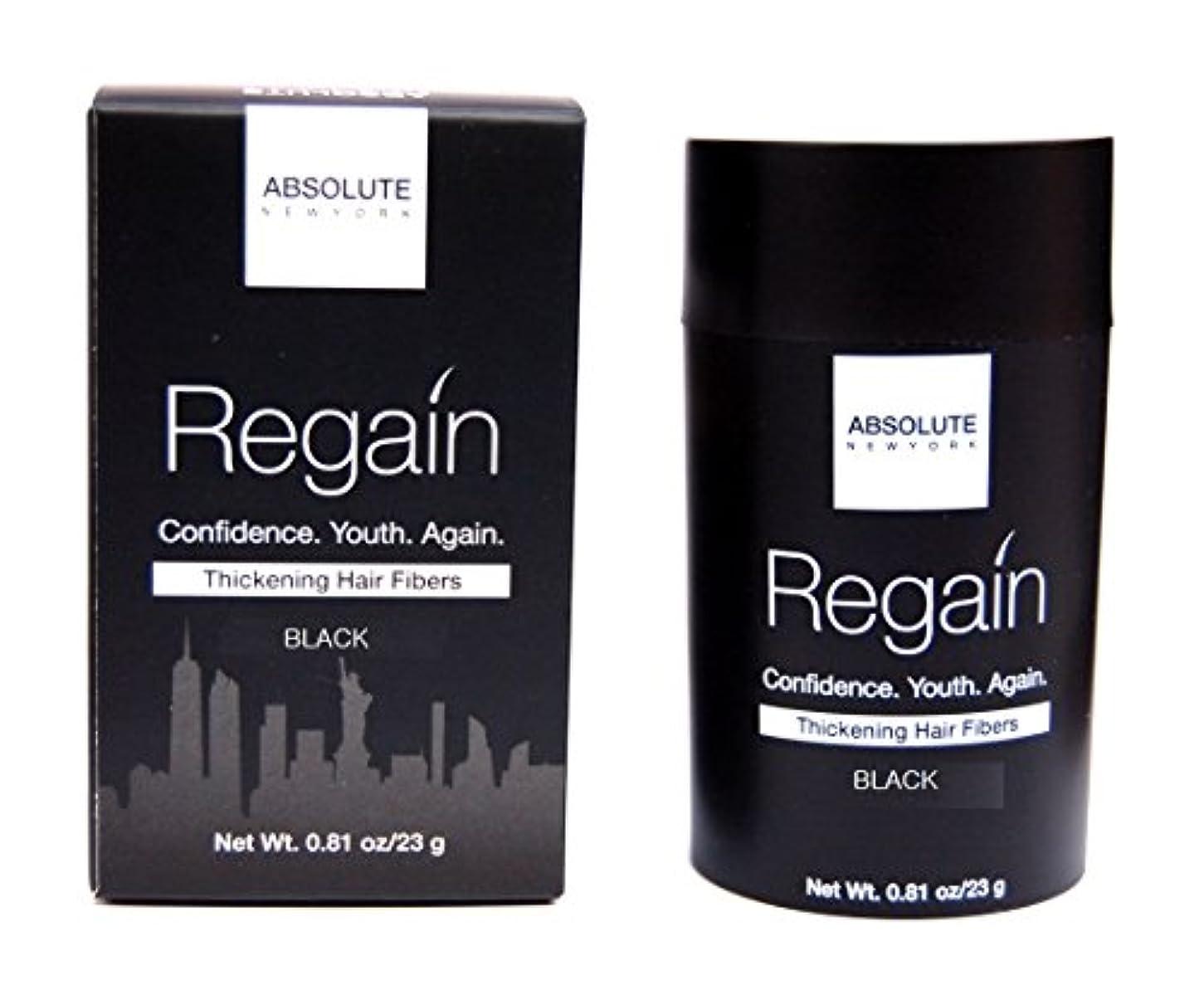 天井有望つかの間Absolute Regain Hair Fiber Large Size - Black (並行輸入品)