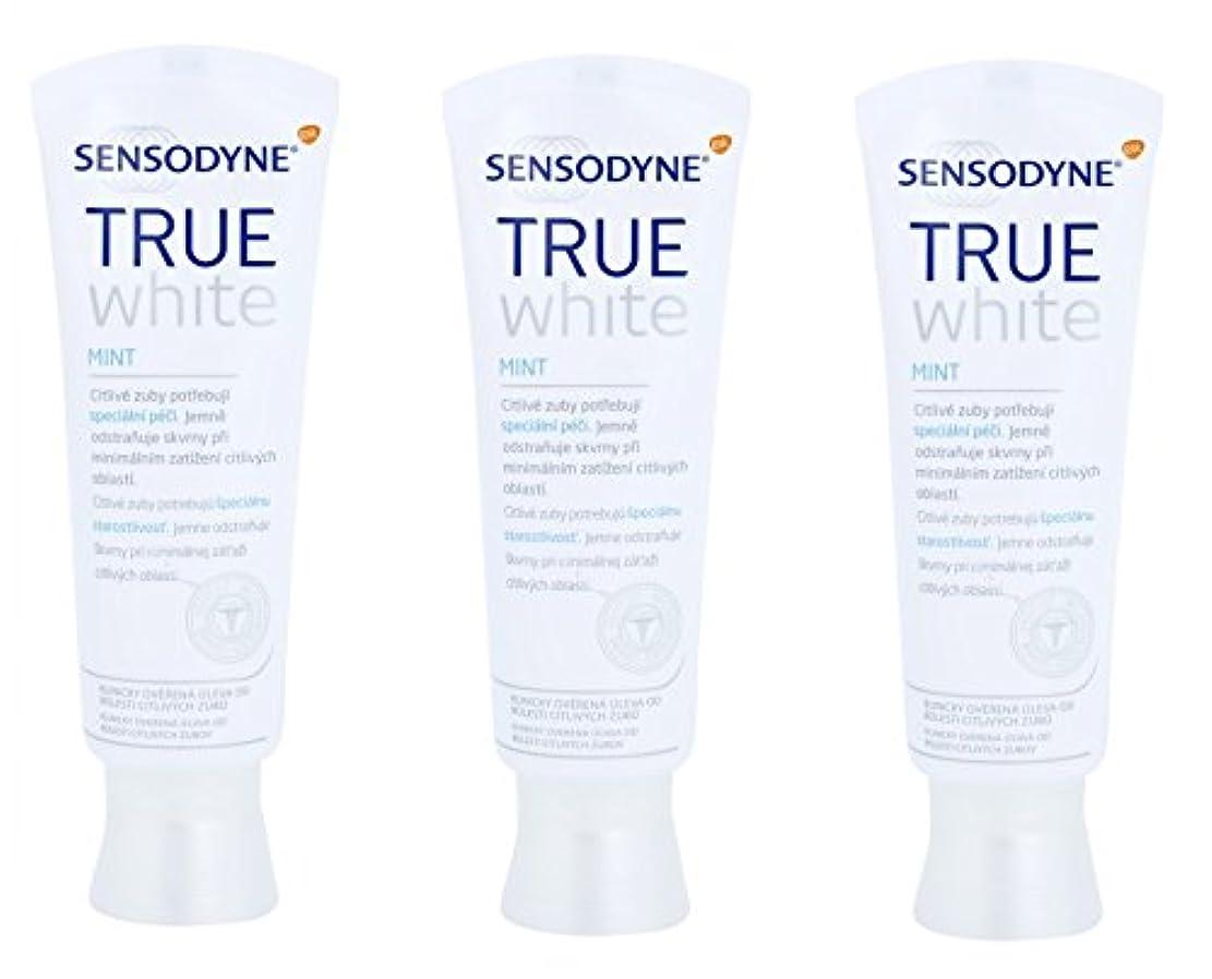 バンジョーあいまい何もない(ヨーロッパ版!) シュミテクト True White 薬用シュミテクト トゥルーホワイト 研磨剤無配合 知覚過敏予防  歯磨き粉 100g x3個入 [並行輸入品]