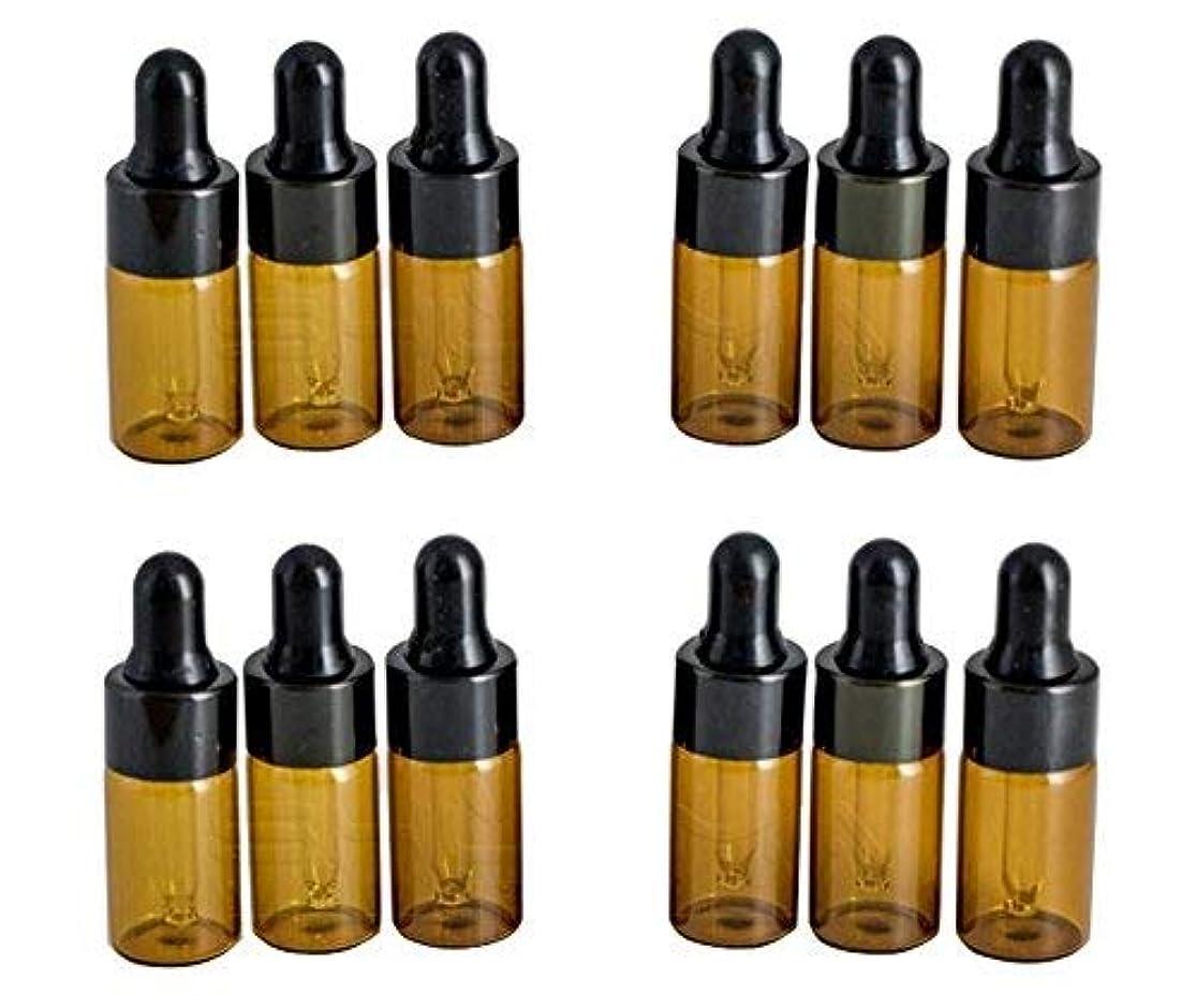 ドライバドラゴン大声で12PCS 3ml/3ML Empty Refillable Amber Glass Essential Oil Bottles Makeup Cosmetic Sample Container Bottle Pot with Eye Glass Dropper for Aromatherapy Use Attar Bottle [並行輸入品]