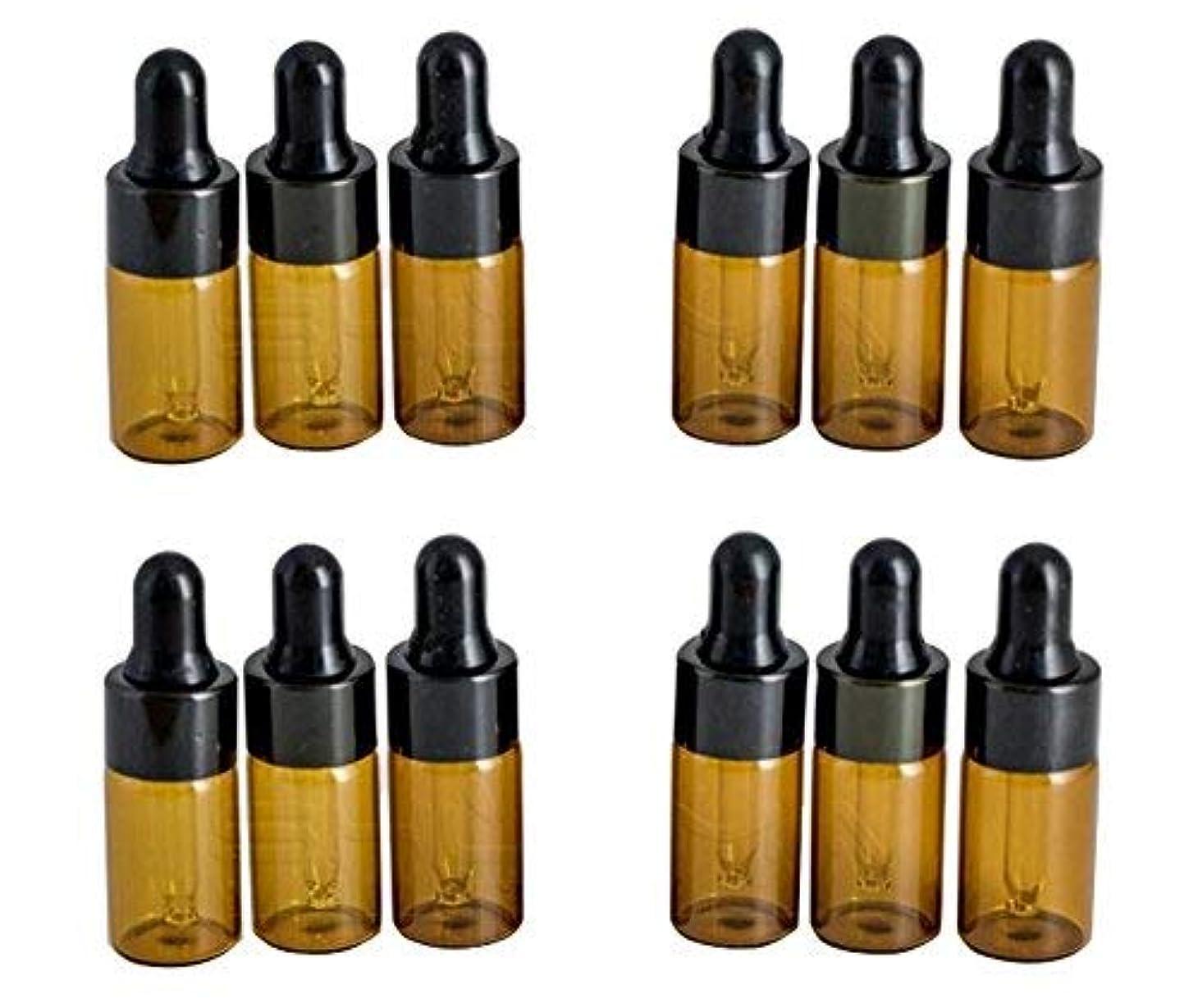 油学校動物園12PCS 3ml/3ML Empty Refillable Amber Glass Essential Oil Bottles Makeup Cosmetic Sample Container Bottle Pot with...